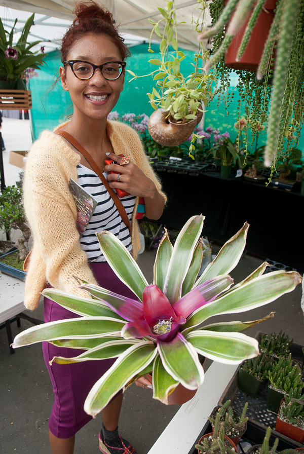 Early in the day at the Beauti Florist booth we found the newest addition to our shade-plant family, a tank bromeliad with a fuchsia middle and a cupped crown for trapping water.