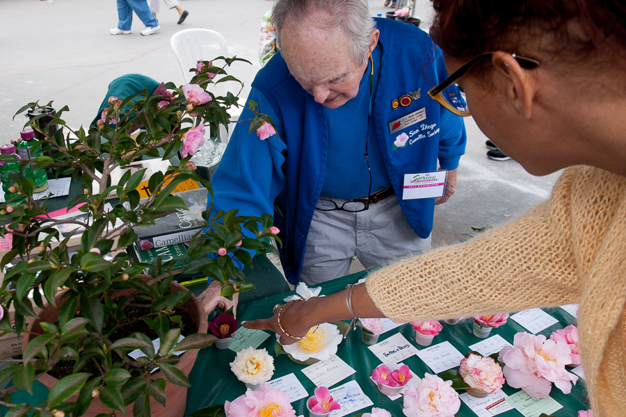 Eugene Snooks of the San Diego Camellia Society reveals his favorites and his frustrations.