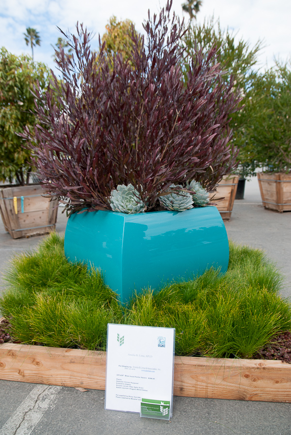 Another stylish planter, this one by Amelia B. Lima.
