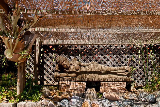 Many of the stone statues are from Bali, where Barry's brother now lives. Here, a Hindu goddess reclines beside the staghorn fern.