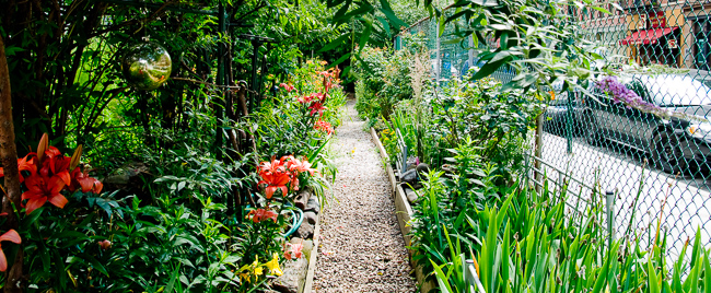 la-guardia-corner-gardens-bleeker-community-gardenDSC_1303-ryanbenoitphoto-for-thehorticult
