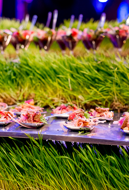 coast-catering-barry-layne-sd-museum-of-art-alive-2013-opening-celebration-RMB_0141-ryanbenoitphoto-for-thehorticult