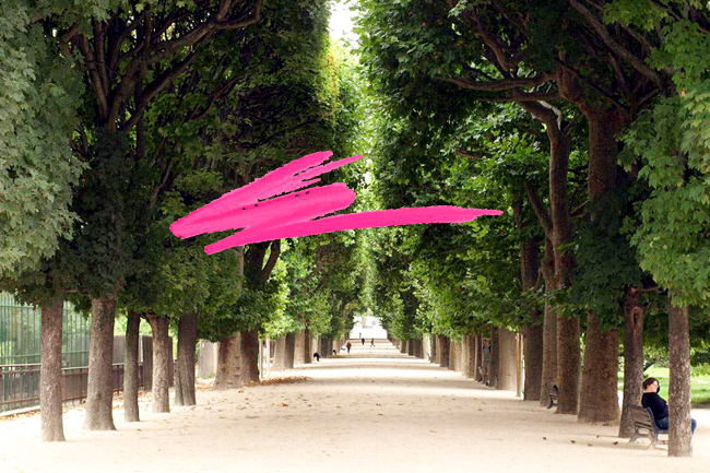 doc-q-man-flickr-jarden-des-plantes-thehorticult