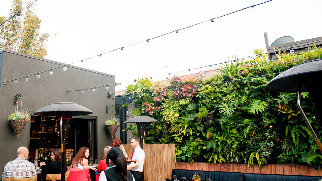 Lush Life: A Dining Oasis (and Happy Hour Destination) For Botany Buffs