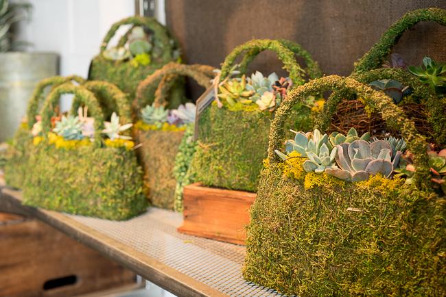 green-fresh-florals-thehorticult-ryanbenoitphotoRMB_1156