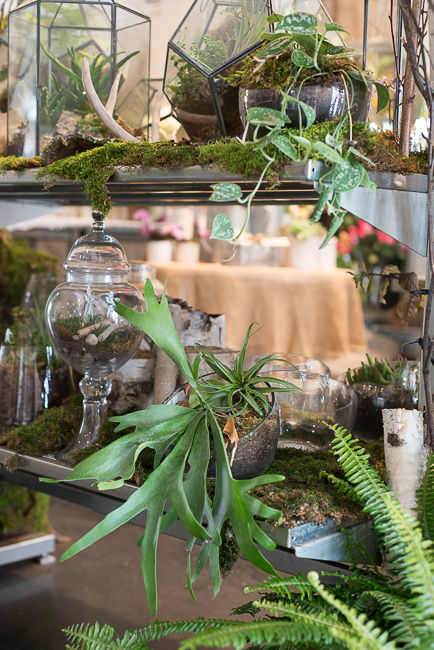 green-fresh-florals-thehorticult-ryanbenoitphotoRMB_1200