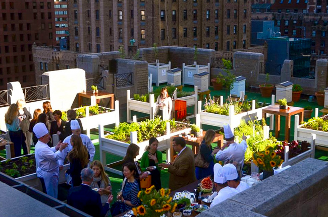 Waldorf Astoria Unviels Rooftop Garden with Tim Gunn (18)