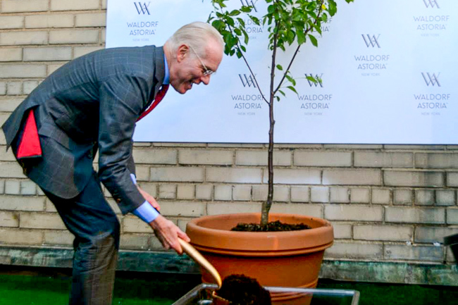 Waldorf Astoria Unviels Rooftop Garden with Tim Gunn (28)