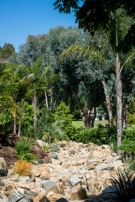 grand-tradition-gardens-ryanbenoitphoto-thehorticult-RMB_2965