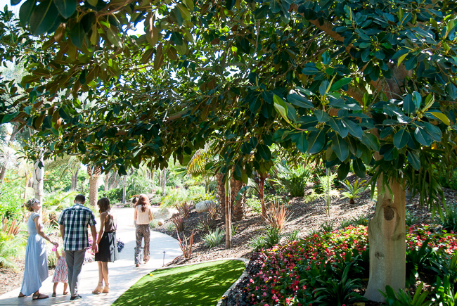 grand-tradition-gardens-ryanbenoitphoto-thehorticult-_RMB0424