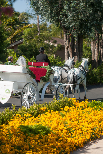 grand-tradition-gardens-ryanbenoitphoto-thehorticult-_RMB0444