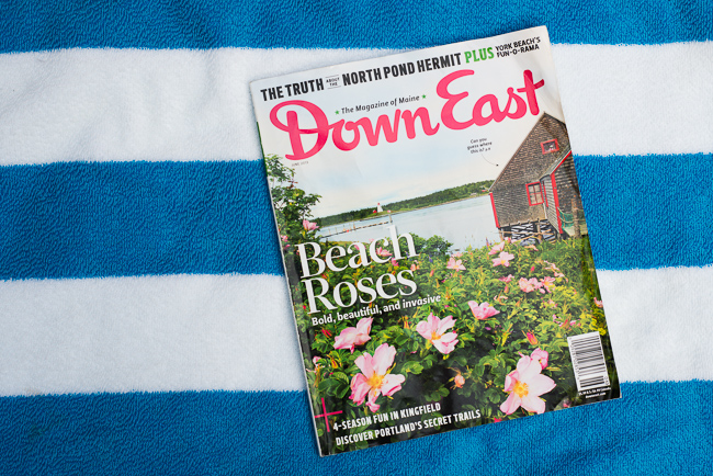 rosa-rugosa-japanese-rose-ramanas-Down-East-Magazine-ryanbenoitphoto-thehorticult-RMB_5075
