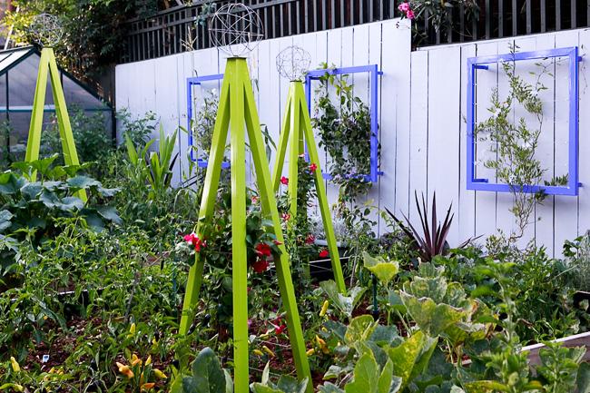 Akoris Garden Tuteur Ina Wall Trellis in ornamental/edible garden. Photo by Lauren Devon