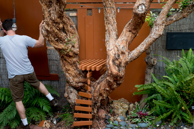 Guava-Tree-Table-and-Living-Wall-Ryan-Benoit-Design-2013-RMB_3246