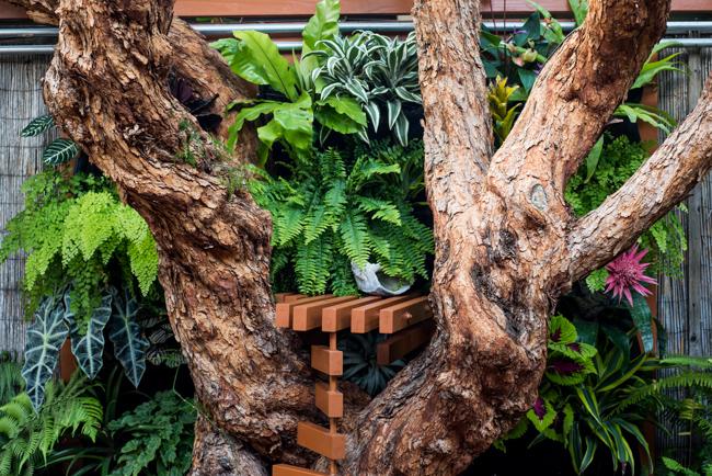 The Horticult vertical shade garden.