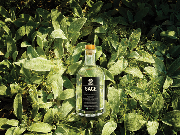 Art in the Age Sage gin.