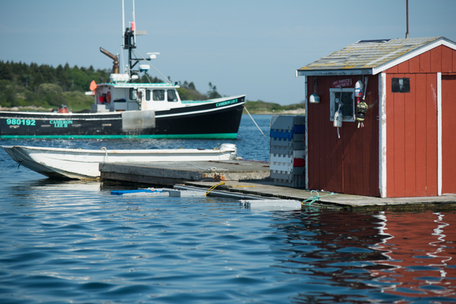 The view from our lobster rolls at Cape Porpoise, Maine.