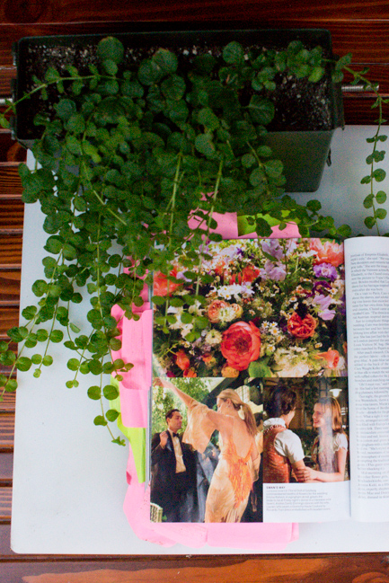 Our Lysimachia nummularia (creeping jenny) boogies down with the images from Caroline Sieber's peony- and sweetpea-filled wedding.
