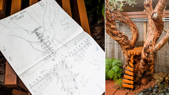 Gauva tree table design prior to living wall installation.