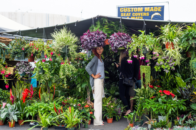 Made In The Shade Building A Vertical Garden Under The