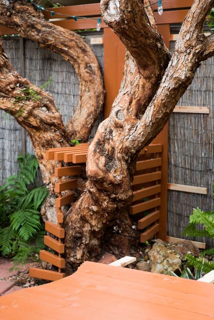 Buiding the Horticult garden living wall.