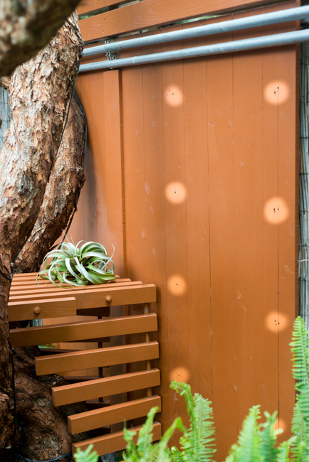 living-wall-DIY-Woolly-Pockets-ryanbenoitphoto-thehorticult-RMB_3519