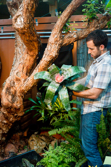 living-wall-DIY-Woolly-Pockets-ryanbenoitphoto-thehorticult-RMB_3596