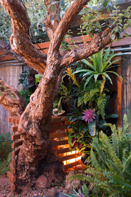 Made In The Shade Building A Vertical Garden Under The Canopy Of