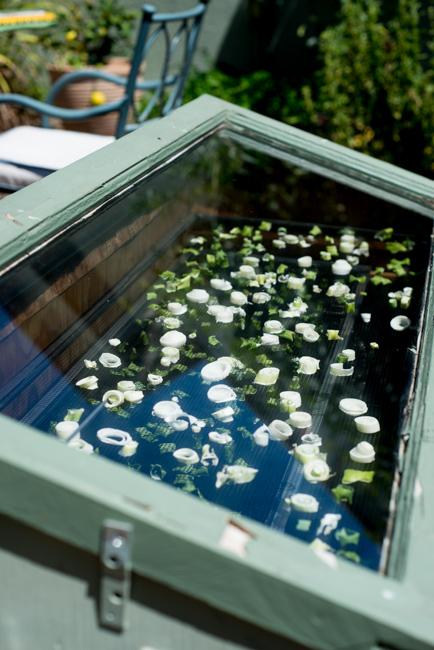 Gardenerd-featured-on-The-Horticult-RMB_8474