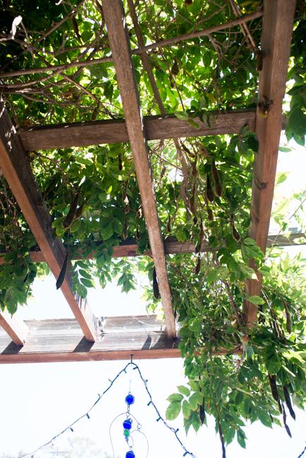Gardenerd-featured-on-The-Horticult-RMB_8491