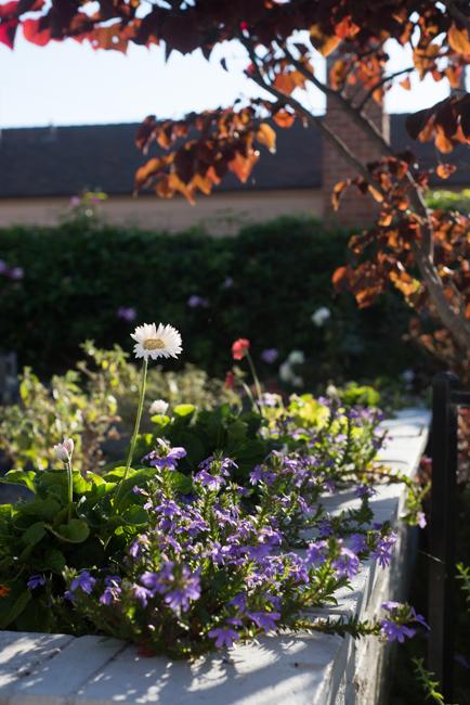 Kimberly-Kassner-Garden-ryanbenoitphoto-thehorticult-RMB_7645