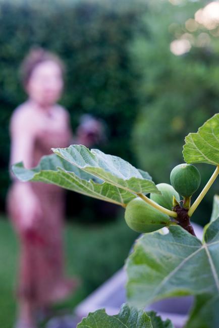 Kimberly-Kassner-Garden-ryanbenoitphoto-thehorticult-RMB_7804