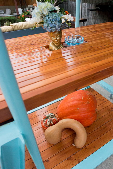 Fall-Decorating-Entertaining-with-gourds-ryanbenoitphoto-thehorticult-RMB_1514