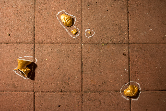 Gold-Head-Vase-DIY-ryanbenoitphoto-thehorticult-RMB_1204