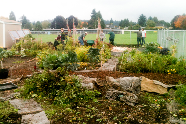 Helensview-Community-Garden-photo-featured-on-thehorticult