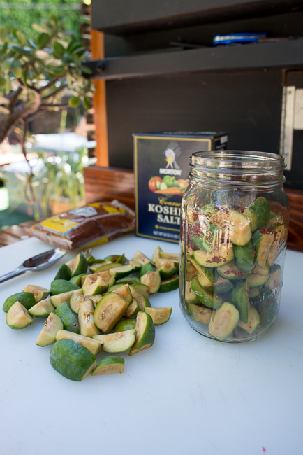 Pickled-guava-feijoa-sellowiana-ryanbenoitphoto-thehorticult-RMB_9635