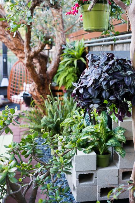 Cinder-Blocks-Garden-ryanbenoitphoto-thehorticult-RMB_2835