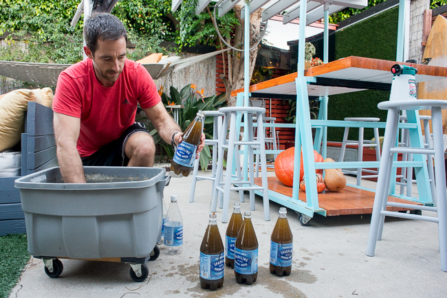 DIY-Seaweed-Liquid-Fertilizer-Part-2-Dilution-and Application-ryanbenoitphoto-thehorticult-RMB_2218