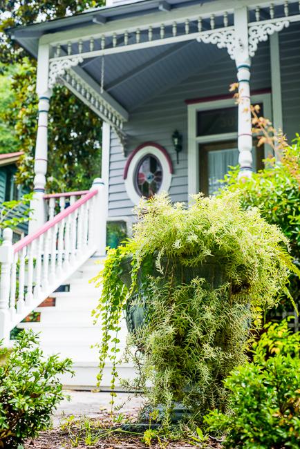 Downtown-Wilmington-NC-Historic-Garden-Walking-ryanbenoitphoto-thehorticult-RMB_3990