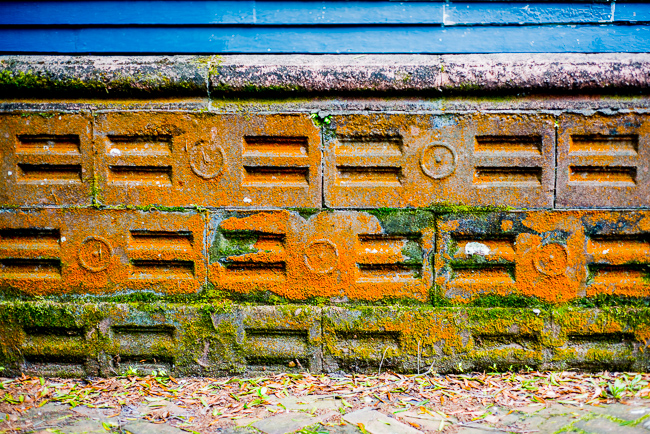 Downtown-Wilmington-NC-Historic-Garden-Walking-ryanbenoitphoto-thehorticult-RMB_3997