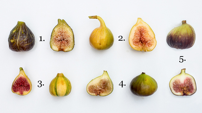 Five Types of Figs