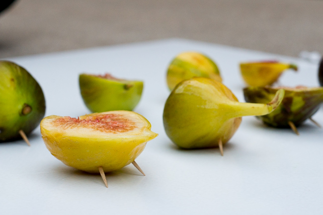 Five-Fig-Varieties-ryanbenoitphoto-thehorticult-RMB_1467