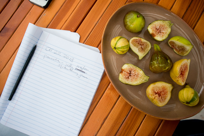 Five-Fig-Varieties-ryanbenoitphoto-thehorticult-RMB_1476