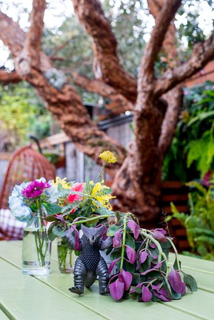 Warrens-Garden-ryanbenoitphoto-thehorticult-RMB_2948