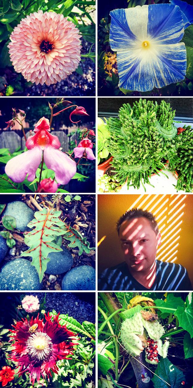 warrens-garden-thehorticult
