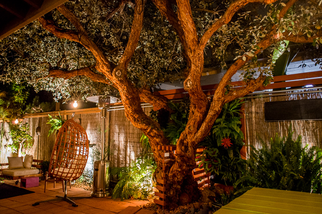 The Horticult Garden Tour - The Guava Tree Room - Ryan Benoit Design