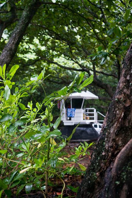 Kauai-RMB_4299-ryanbenoitphoto-thehorticult