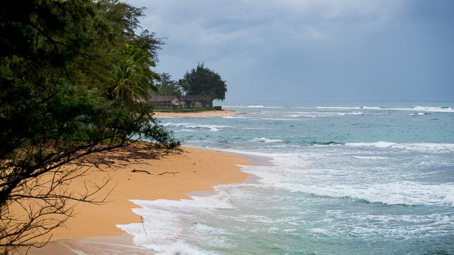 Kauai-Travel-2013-ryanbenoitphoto-thehorticult-RMB_4162