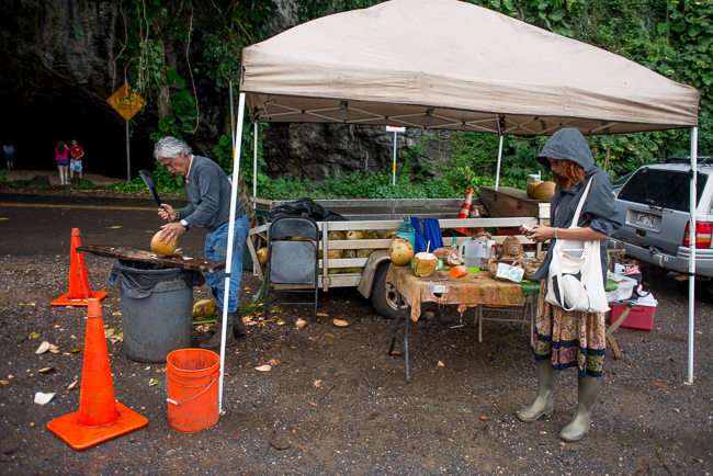 Kauai-Travel-2013-ryanbenoitphoto-thehorticult-RMB_4182