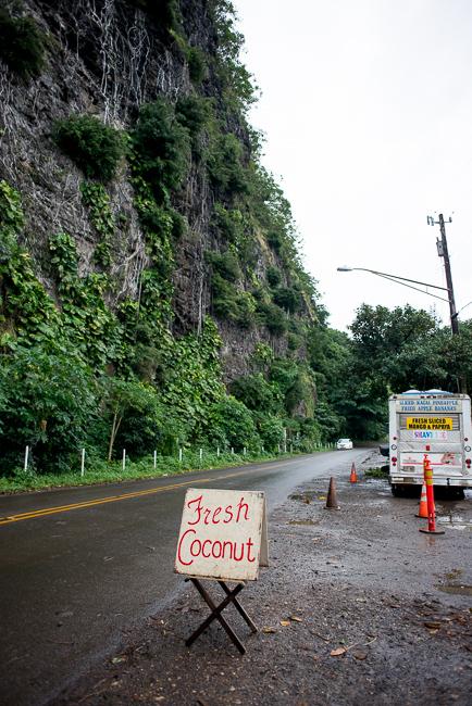 Kauai-Travel-2013-ryanbenoitphoto-thehorticult-RMB_4206